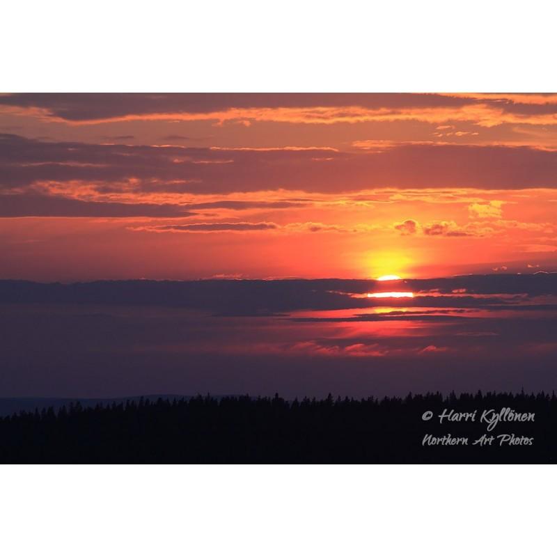 Kesäyön aurinko - Canvas-taulu