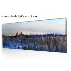 Customized Photo Panoramic Canvas Print