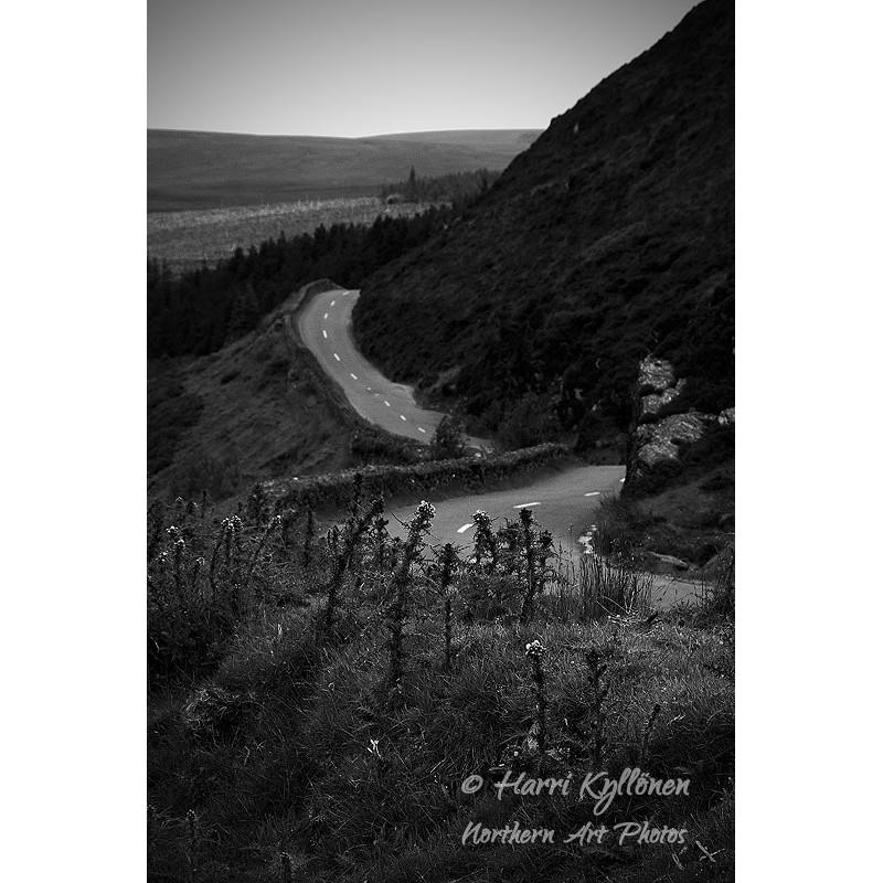 Irlantilainen tie - Canvas-taulu
