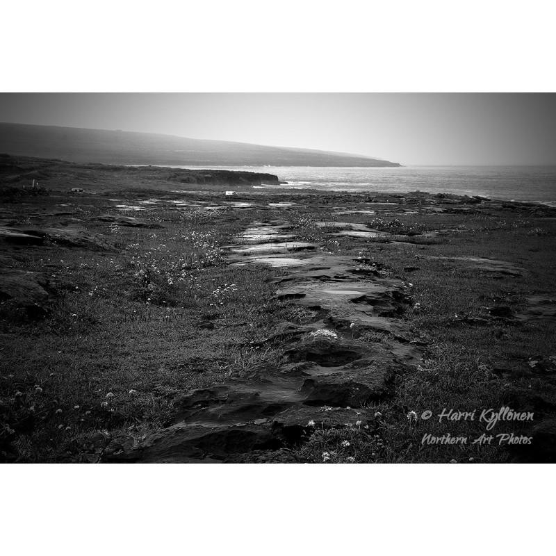Märkä ranta II - Canvas-taulu