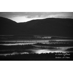 Mist of night - Canvas print