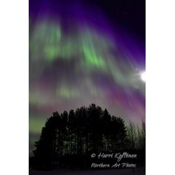 Auroras up high - Canvas print