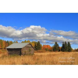 Barn at Haukiniemi - Canvas...