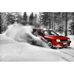 Rally Driving - Canvas print