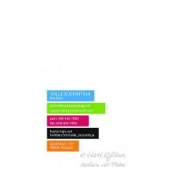 Väripalkit II - Käyntikortti