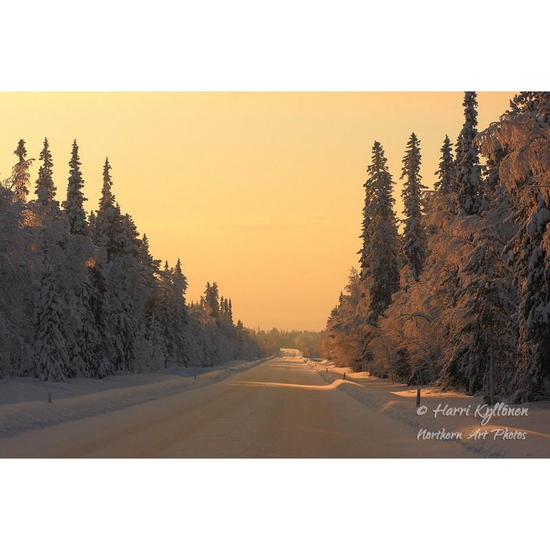 Talvinen tie II - Canvas-taulu