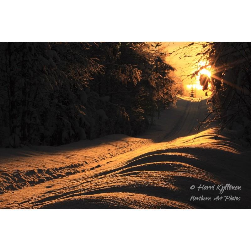 Aurinkopolku - Canvas-taulu