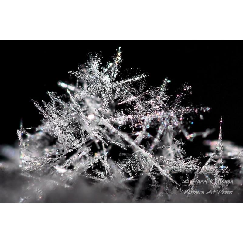Lumihiutaleet - Canvas-taulu