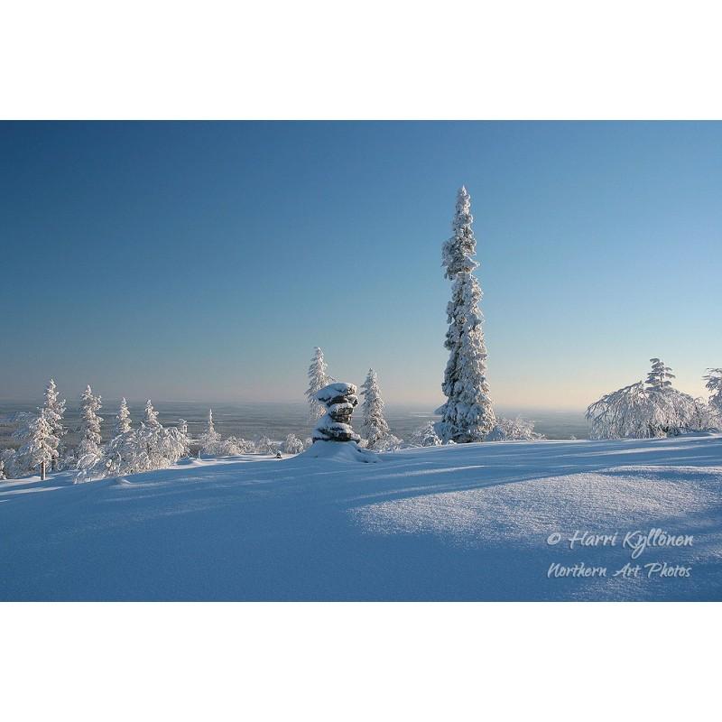 Kaunis talvi - Canvas-taulu