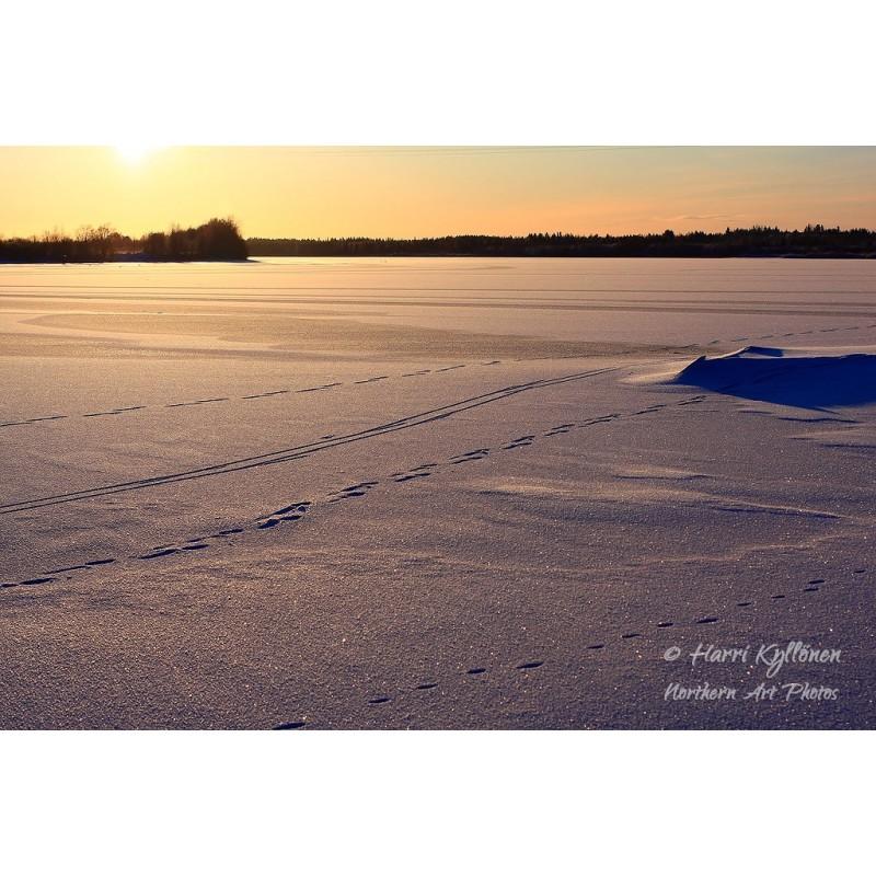 Jäätyneen joen ensijäljet - Canvas-taulu