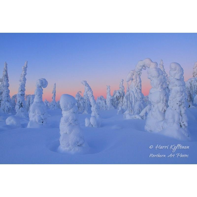 Talvi-ihmemaa - Canvas-taulu