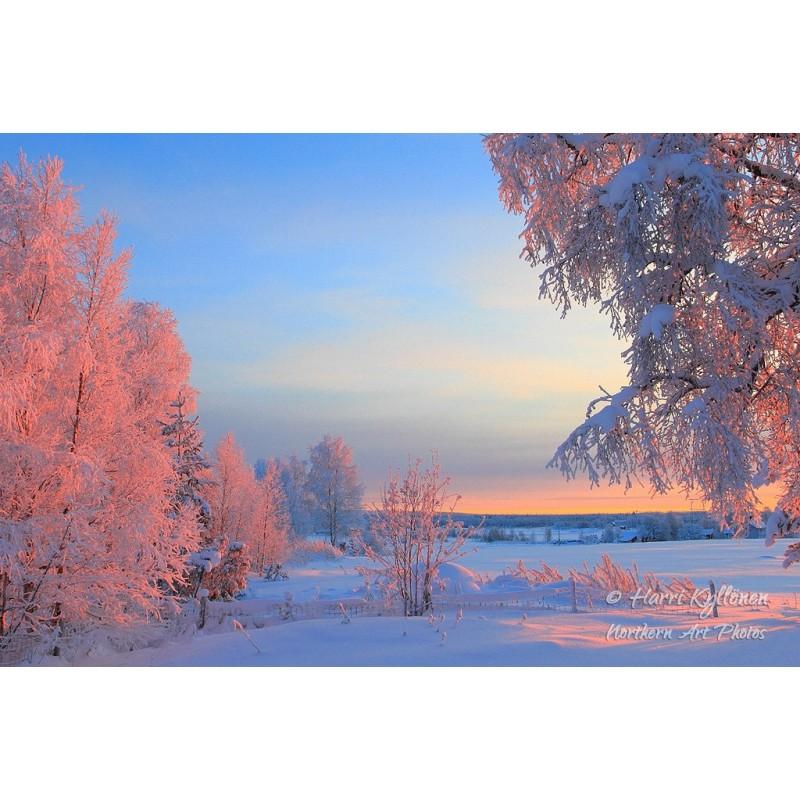 Talviaamun värit - Canvas-taulu