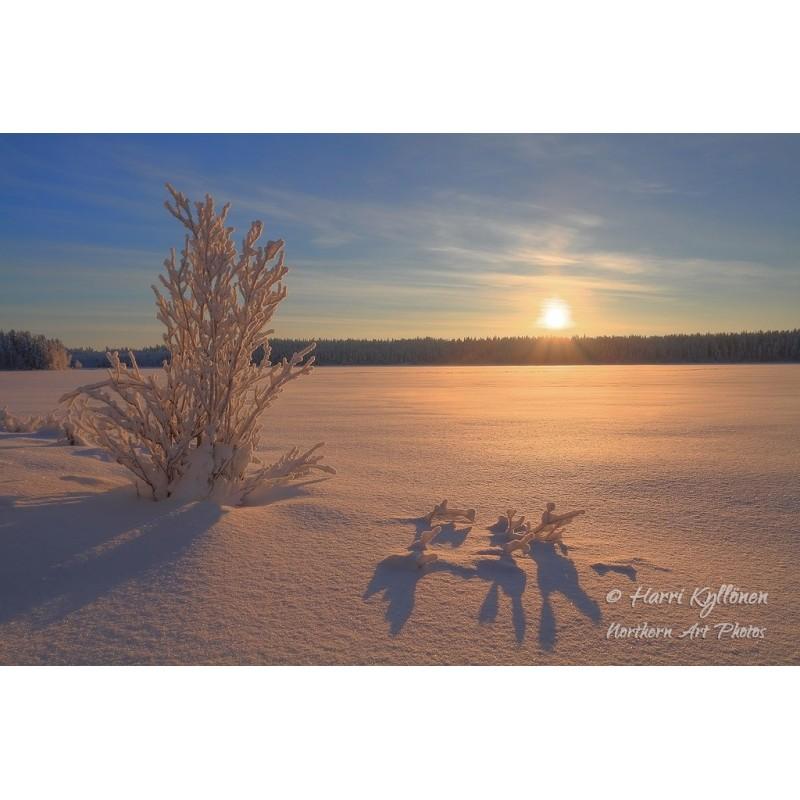 Auringonlasku Mustajärvellä - Canvas-taulu