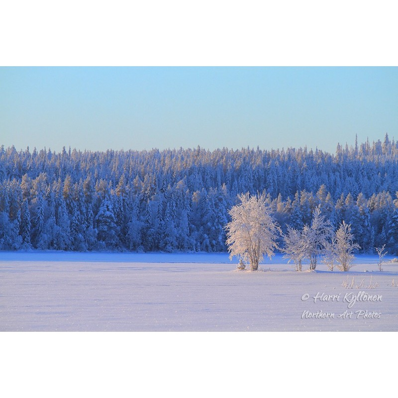 Ulappa talvella - Canvas-taulu