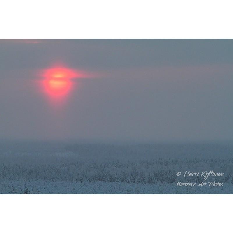 Punainen talviaurinko - Canvas-taulu