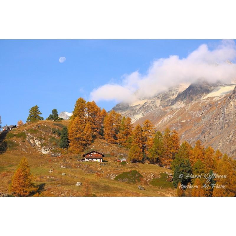 Vuoriston ruskaa - Canvas-taulu