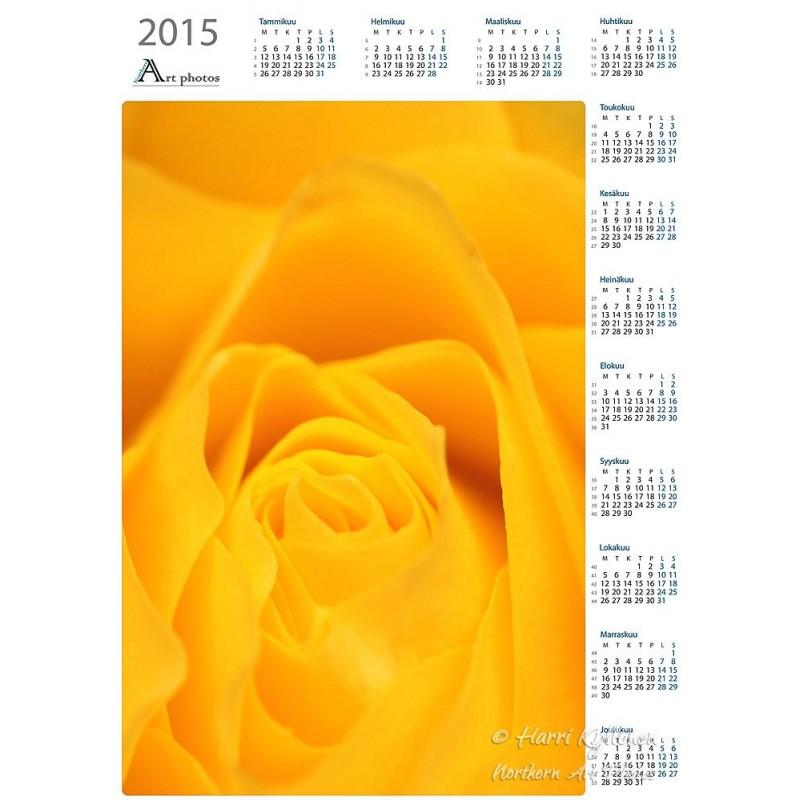 Keltainen ruusu helsinki suomi alastonkuvat