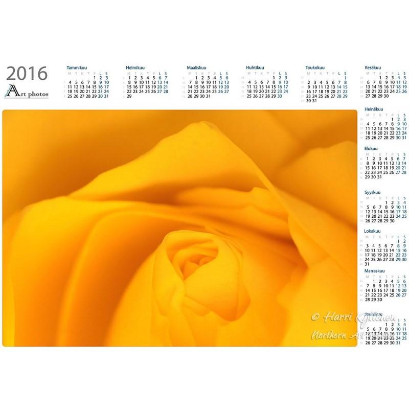 suomalaista ryhmäseksiä keltainen ruusu helsinki