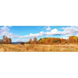 Haukiniemi ruskan väreissä - HD - Canvas-taulu