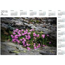 Between the cliff - Year Calendar