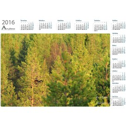 Wood Grouce - Year Calendar