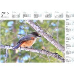 Kuukkeli II - Vuosikalenteri