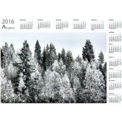 Valkoinen metsä -...