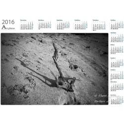 Like a skull - Year Calendar