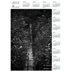 Hidden path - Year Calendar