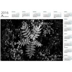 Mustikat ja pihlaja - Vuosikalenteri