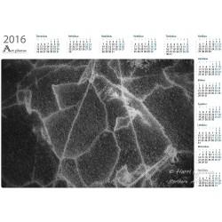 Cracking ice - Year Calendar