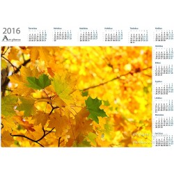 Autumn leaves - Year Calendar