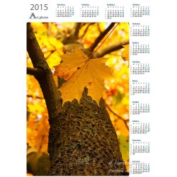 Maple - Year Calendar