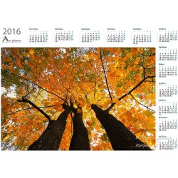 Leading up - Year Calendar