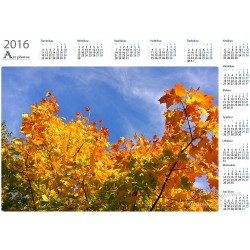 Up in the air - Year Calendar
