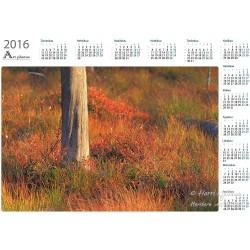 Maaruska ja honka - Vuosikalenteri