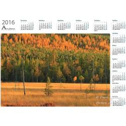 Syysvärit jängällä - Vuosikalenteri