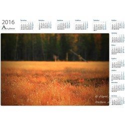 Syysvärit jängällä II - Vuosikalenteri