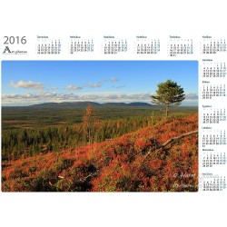Omituinen kuusi - Vuosikalenteri
