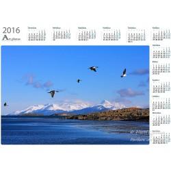 Fly-by - Year Calendar