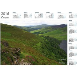 Guinness Lake - Year Calendar