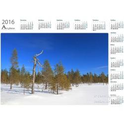 Nearing spring - Year Calendar