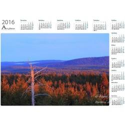 Kevätillan valo - Vuosikalenteri