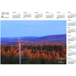 Spring evening light - Year Calendar