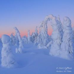 Talvimaailma - Canvas-taulu