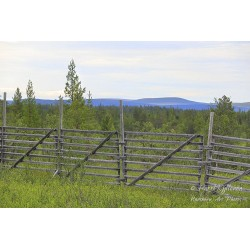 Old Wood Fence - Canvas print