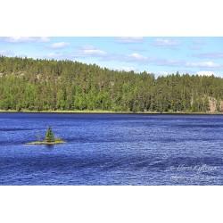 Tuulinen järvi - Canvas-taulu
