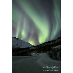 Leading auroras - Canvas print