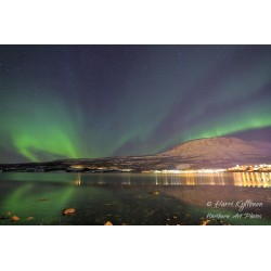 Northern lights at Bjerkvik - Canvas print