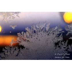 Growing ice cover - Canvas...